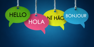 Read more about the article The Role of Language